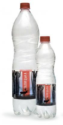 Галицкая вода негазированная